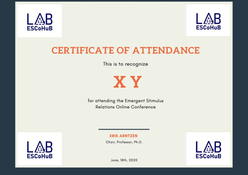Certificate of participation at the mini-conference